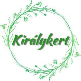 Multiflora begónia